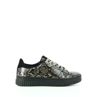 pronti-259-4k7-baskets-sneakers-chaussures-a-lacets-multi-gris-fr-1p